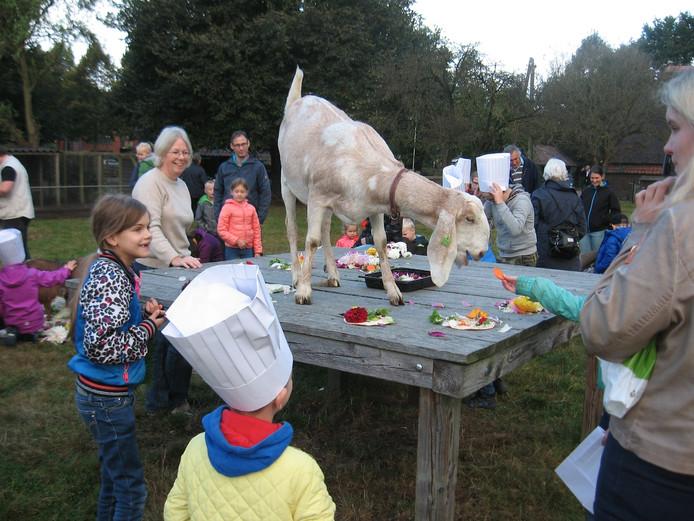Archieffoto. Een viering van Dierendag in kinderboerderij de Oude Hofstede te Ede.