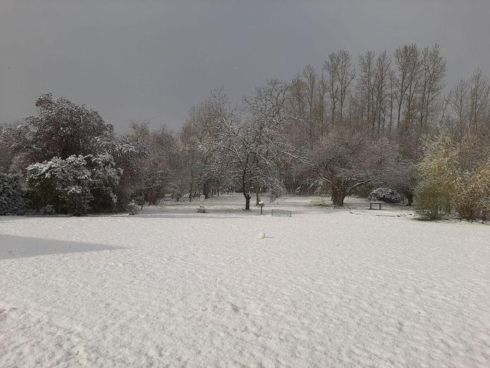 Sneeuwtapijt in Kersbeek-Miskom (Kortenaken)