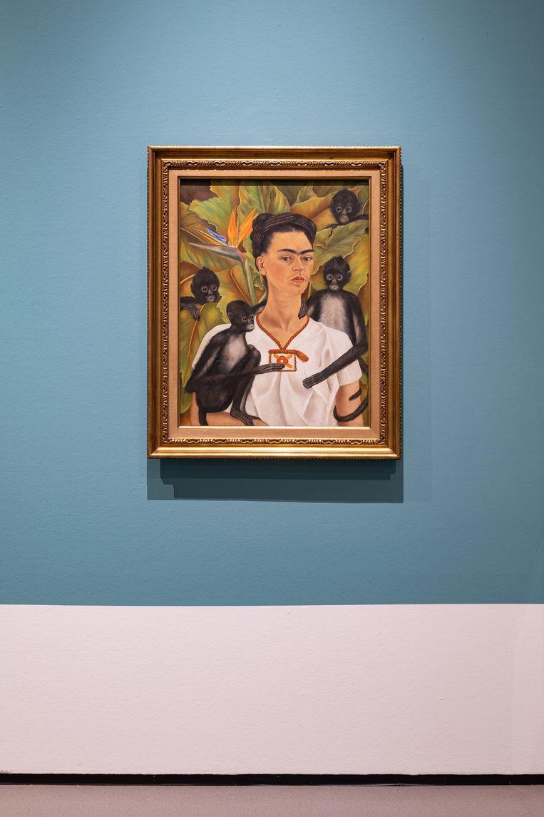 55 van Frida Kahlo's 143 schilderijen omvattende oeuvre zijn zelfportretten. Beeld Peter Tijhuis