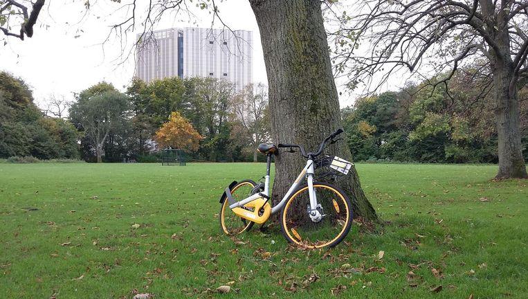 Door de hele stad staan nog de opvallende en soms verwaarloosde 'deelfietsen'. Beeld Marc Kruyswijk