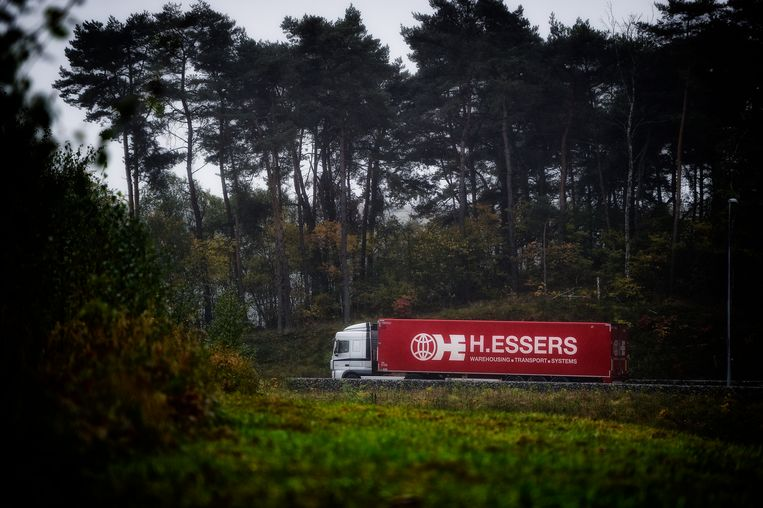 Het protest van natuurvereniging BOS+ tegen het zogenaamde tweede Essers-bos op de Hörmannsite in Genk, was bijna te laat ingediend, door problemen met het Omgevingsloket. Beeld BELGA