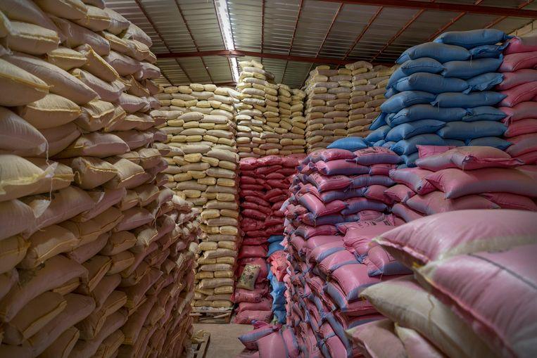 De magazijnen van de rijstverwerkingsfabriek puilen uit. Beeld Sven Torfinn