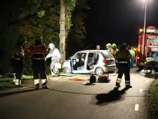 Automobiliste naar ziekenhuis na botsing tegen boom