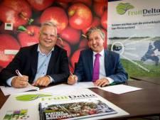 Gemeente Tiel schendt privacywet met informatie aan het Fruitcorso