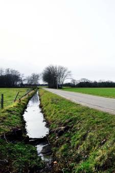Hier komt het eerste voedselbos van Roosendaal