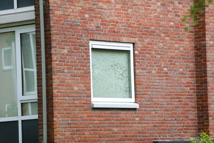 In de woning waar de overleden persoon is gevonden zijn vele vliegen te zien aan de binnenkant van de ramen.