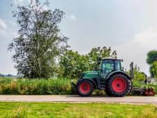 Verpauperde wijken door slecht groenonderhoud? Twenterand belooft beterschap