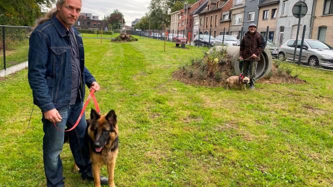 """Hondenlosloopweide valt in de smaak: """"Los lopen is voor onze honden gewoon veel toffer"""""""