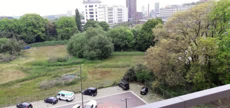 Gloeilampplantsoen in Eindhoven kost 1,5 miljoen euro