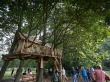 Breinpad op Landgoed Grote Beek geopend: breinpunten prikkelen de geest
