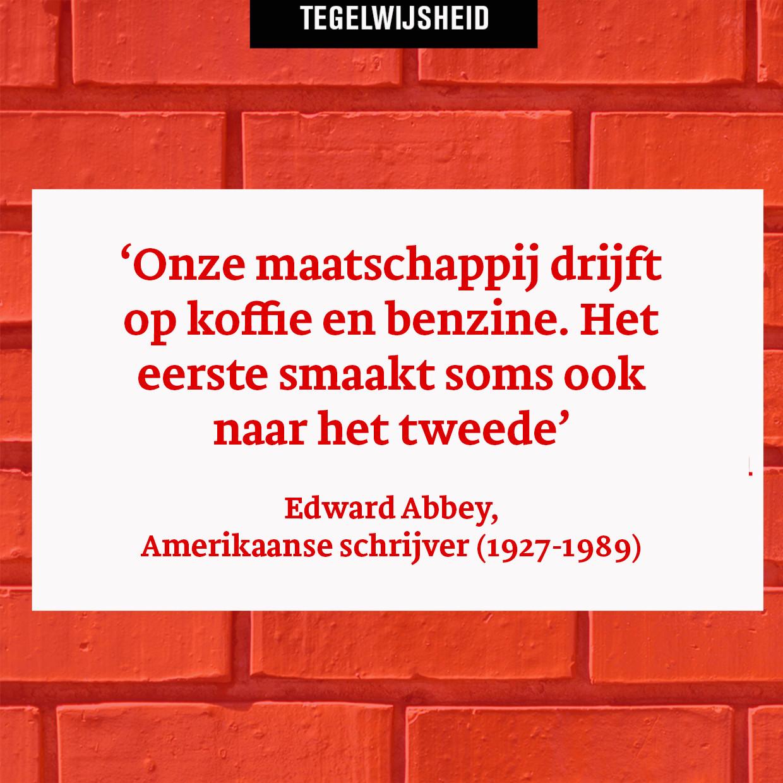 Tegelwijsheid: Edward Abbey, Amerikaanse schrijver (1927-1989) Beeld Humo