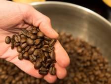 Waar drink je dit jaar de beste koffie?
