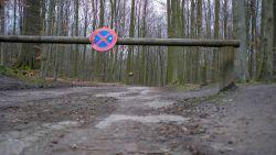 Loopster in Zoniënwoud aan aanranding ontsnapt? Man bedreigt vrouw met vuurwapen