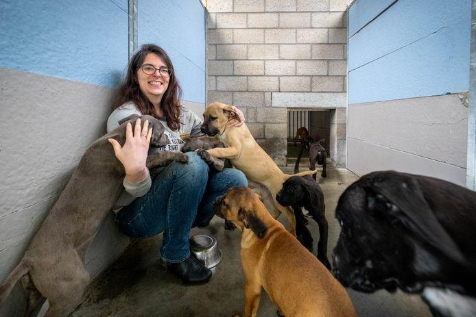 Archiefbeeld van Wendy Kerselaers tussen enkele puppies die werden weggehaald bij een fokker in Booischot