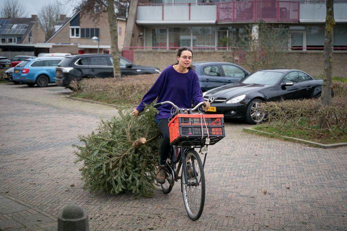 Op weg met de kerstboom naar de inzamelplek in Noordwest.