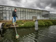 CSI tussen de kassen: Vervuilende tuinders eerder opgespoord dankzij nieuwe dna-opsporingsmethode