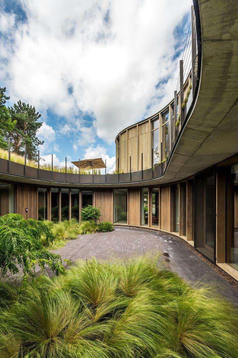 Een centrale patio voorziet de slaapkamers van licht en een groen uitzicht. Beeld Luc Roymans