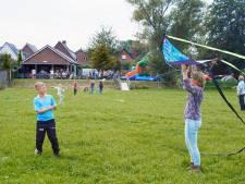 Genoeg wind, dus het WK vliegeren in Dreumel kon doorgaan