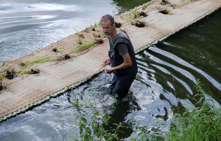 Het bedrijf De Water Architect levert de Ieperse matten.