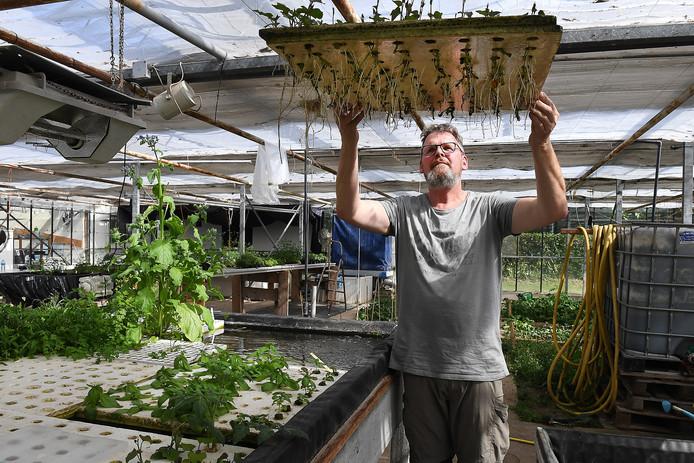Jos Hakkennes is eigenaar van Blue Acres. Hij kweekt groenten op water.