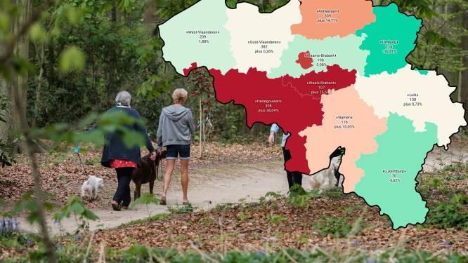 IN KAART. Besmettingen dalen weer in 4 provincies, het felst in Limburg. Bekijk hier de situatie in uw regio