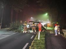 Boom valt op rijdende auto op Nijmeegsebaan in Groesbeek: bestuurder komt met schrik vrij