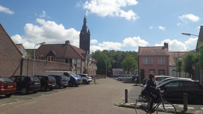 Meer groen in de Terneuzense binnenstad zou volgens adviesbureaus KuiperCompagnons en TwynstraGudde zeker niet misstaan.