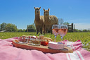 Picknicken tussen de alpaca's.