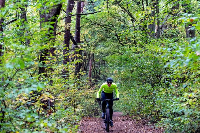 De MTB-routes op de Kalmthoutse Heide kunnen aan elkaar geknoopt worden, waardoor een langere route ontstaat, ondervond mountainbiker Timo van de Kasteele.