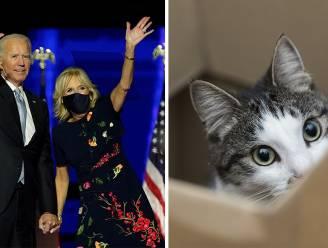 Geschenk voor toekomstige First Lady? Joe Biden neemt naast zijn honden ook een kat mee naar het Witte Huis