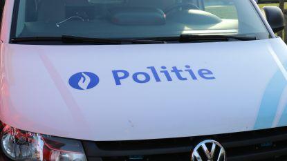 Auto gestolen van oprit in Breedstraat