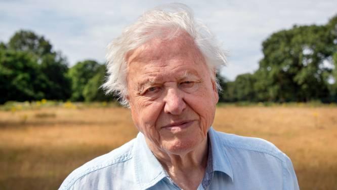 """Natuurboegbeeld David Attenborough (95) waarschuwt: """"G7 staat voor belangrijkste beslissingen in geschiedenis van mensheid"""""""