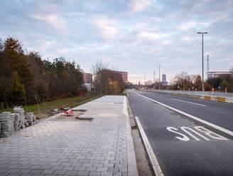"""Sp.a wil  nieuwe bomen langs N16: """"Kap bomenrij zorgt voor geluidsoverlast voor honderden bewoners"""""""