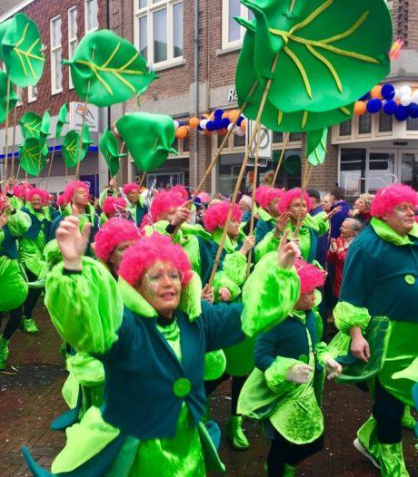 Carnaval in Noordoost-Twente op lijst immaterieel erfgoed