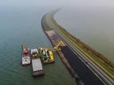 Ondanks graafmachines en trucks 'uitzonderlijk broedsucces' van aalscholverkolonie Houtribdijk