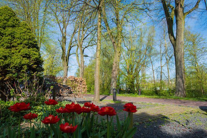 Waalwijk zet met achttien speciale projecten in op meer groen.