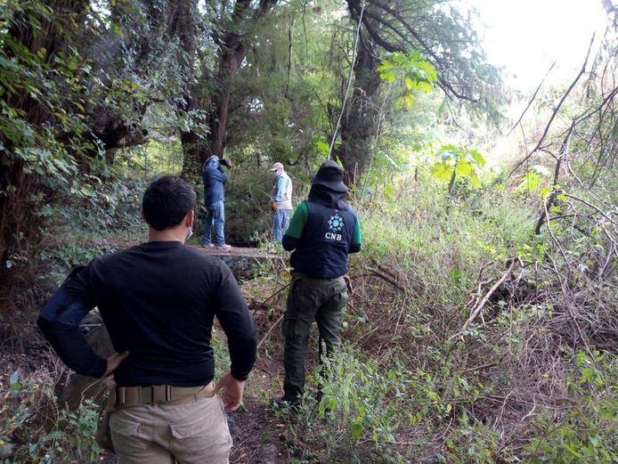 Leden van de onafhankelijke nationale commissie voor de opsporing van personen (CNB) aan het werk in de Mexicaanse staat Guanajuato.