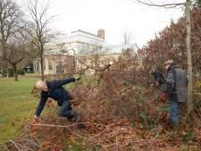 Vrijwilligers verwijderen struiken na hete zomer in Cantonspark Baarn