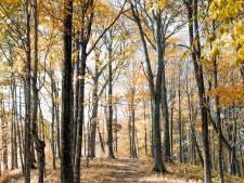 Un temps d'automne calme et sec ce dimanche