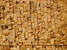 Vergeet die nieuwe schutting maar, extreem houttekort in regio: 'Nog nooit meegemaakt'