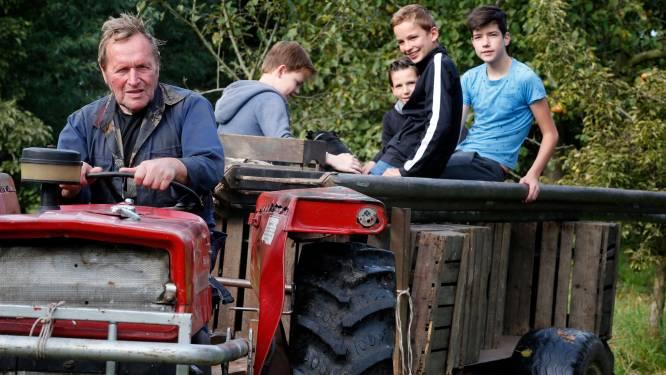Hulptroepen uit het dorp helpen boer Wim (73) met plukken van 600 hoogstamfruitbomen bij Wiel van Bassa