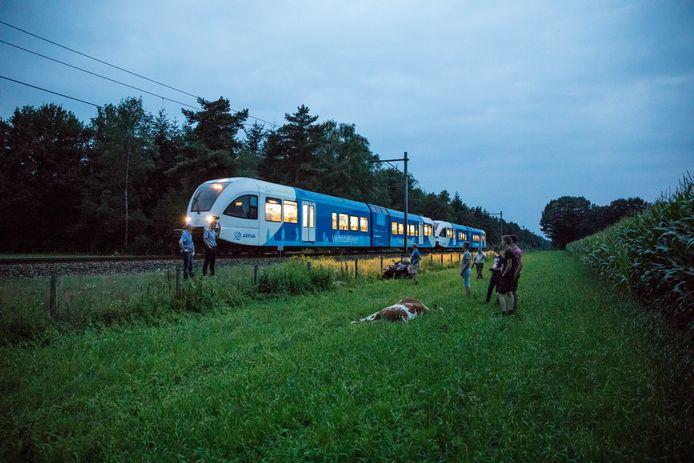Een trein van Arriva in actie.