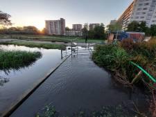 Water stroomt polder in bij Ommoord na ingezakte kade aan de Rotte