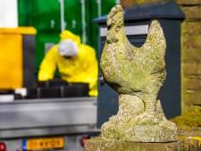 Vogelgriep Sint-Oedenrode niet verspreid; geen besmettingen in omgeving
