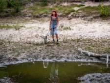 Hond vast in drijfzand in bos Deurne: 'Ik was Whiskey bijna kwijt!'