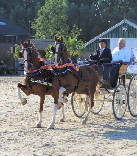 Topmenner Martien Verboord kan het weten: 'Paard moet de wow-factor hebben'