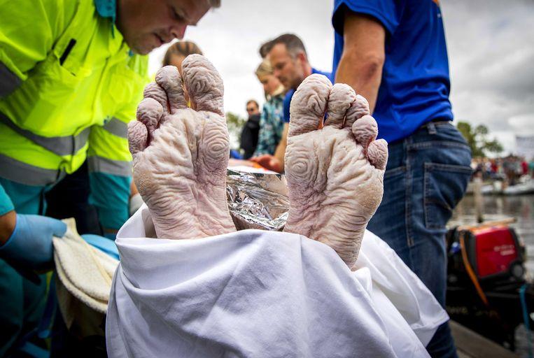 ALLES GEVEN - De voeten van Van der Weijden na zijn 'helse tocht' van 163 km.  Beeld EPA