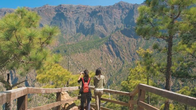 Nog vrij van massatoerisme: dit is het groenste eiland van de Canarische archipel