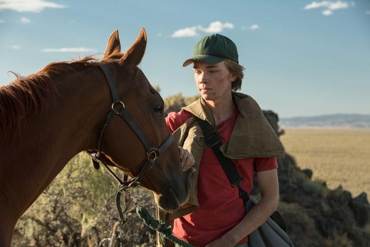 Renpaard Starsky en Charlie Plummer in 'Lean on Pete'. Beeld