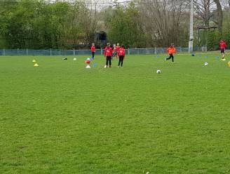 FC Dworp heeft jeugdplan klaar: club wil jonge voetballertjes aan boord houden tot de eerste ploeg
